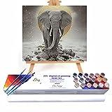 Qegyxk Elefante Animal Pintar por Numeros DIY Pintura por números con Pinceles y Pinturas Decoraciones para el Hogar 50x50cm Sin Marco