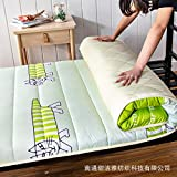 zlzty Foldable Mattress Single, Printed Washed Mattress Student Dormitory Mattress, Foldable Tatami Mattress, Foldable Mattress Travel Cot