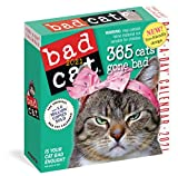 Bad Cat Page-A-Day Calendar 2021