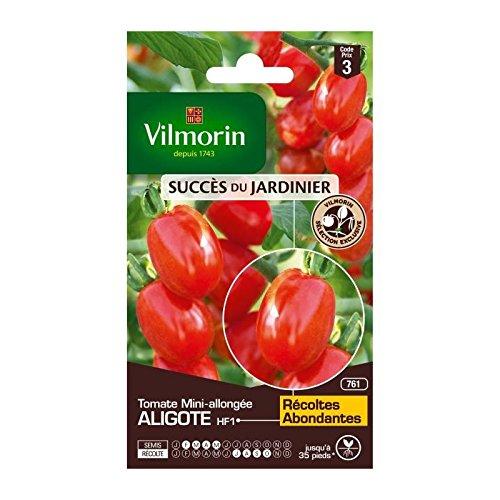Vilmorin - sachet graines Tomate Aligote HF1 vilmorin