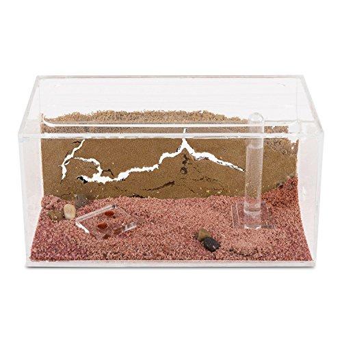 Ameisenfarm Starterkit (Ameisen mit Königin FREE) - 2