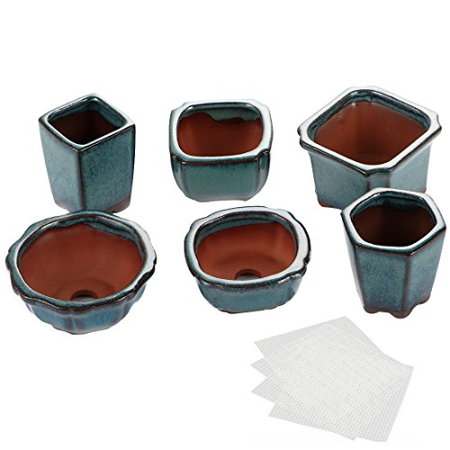 Happy Bonsai 6 pc Mini Glazed Pots Value Set + 6 Soft Mesh Drainage Screens