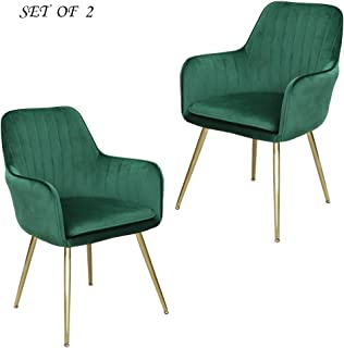 Lansen Furniture Modern Living Dining Room Accent Arm...