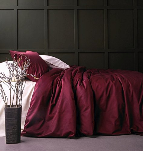 Solid Color Egyptian Cotton Duvet Cover Luxury Bedding Set High Thread Count Long Staple Sateen Weave Silky Soft Breathable Pima Quality Bed Linen (Queen, Burgundy Wine)