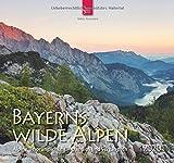 Bayerns wilde Alpen - Alpine Ursprünglichkeit - grandios und vergänglich: Original Stürtz-Kalender 2020 - Mittelformat-Kalender 33 x 31 cm