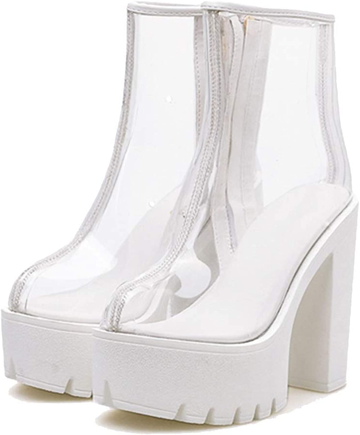 Elsa Wilcox Transparent Boots for Women Spring Autumn Ladies shoes Ankle Boots Sexy High Heels Platform Boots