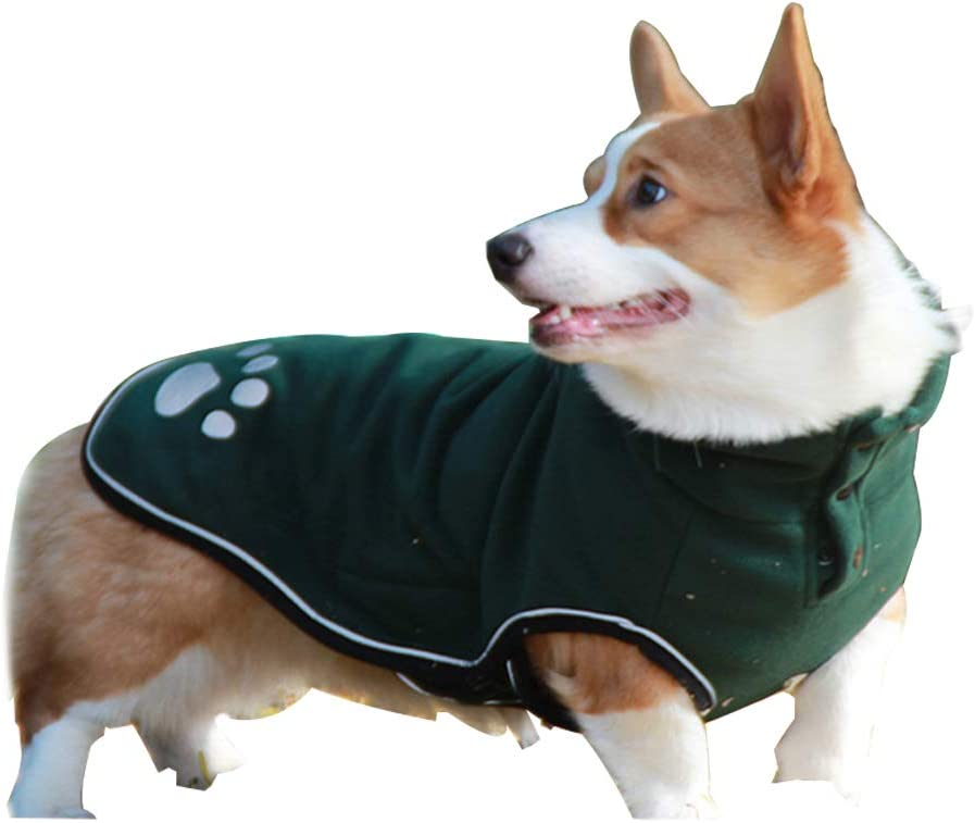 Easy-to-use Pet Clothes Dog Jacket Special price for a limited time Cold Waterproof Shi Elastic Weather Coat