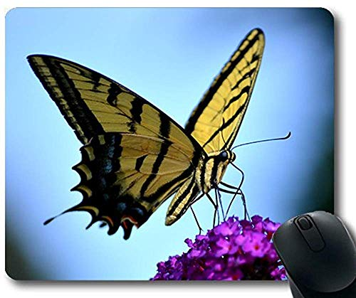 Spielmatte pad antenne schöne blüte niedlichen kolibri Tier Thema mauspad 30 * 25 * 0,3 cm mit genähten Kanten für zuhause und im büro rutschfest