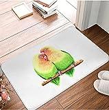 Agapornis Loros Felpudo alfombras alfombras poliéster...