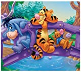 5D Diamond Painting DIY diamond embroidery cartoon Cross stitch painting mosaic cartoon pictures decoration Madagascar Tigger (Winnie the Pooh 12x16inch) (C)