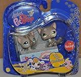 Hasbro Littlest Pet Shop: pares y portables, gato y gato