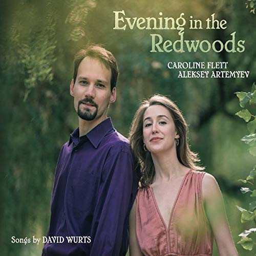 Evening In The Redwoods