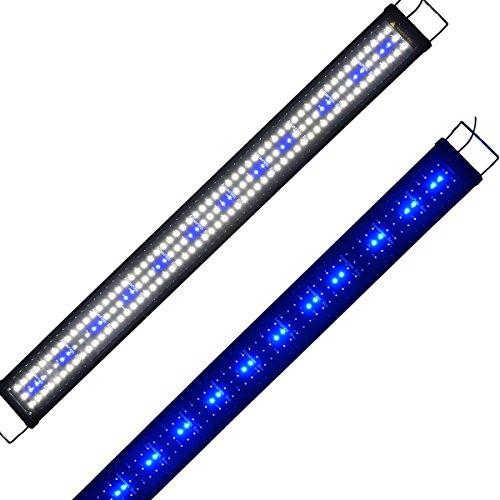 Aquarium-Lampe, Eco Aquarium, 40 cm, Hohe Helligkeit, Weiß/Blau, LED-Beleuchtung, 2 Leuchtmodi, Ausziehbar, mit Stecker