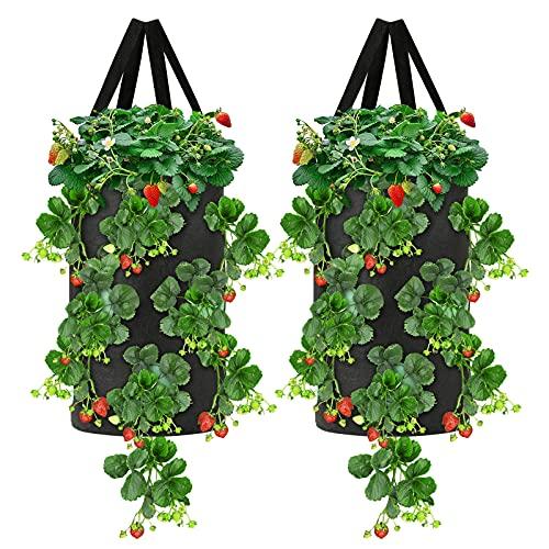 Idefair fragola Crescere Sacchetto,2 CONFEZIONI Sacchetti per coltivazione di piante da 10 galloni Borsa da coltivazione traspirante con manici Fioriere in tessuto Vasi