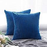 MIULEE 2er Set Cord Weiches Massiv Dekorativen Quadratisch berwurf Kissenbezge Kissen fr Sofa Schlafzimmer Auto 16'x16', 40 x 40 cm Babyblau