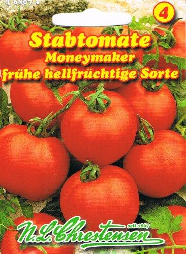 Tomate Moneymaker Stabtomate
