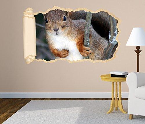 3D Wandtattoo Tapete Eichhörnchen Tier Wald Nagetier Wand Aufkleber Wanddurchbruch Deko Wandbild Wandsticker 11N1134, Wandbild Größe F:ca. 97cmx57cm