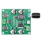 DollaTek Módulo amplificador de audio de placa amplificadora de...