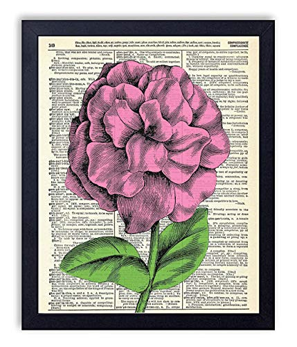 Pink Patunia Flower Vintage Wall Art Upcycled Dictionary Art Print Poster 8x10 inches, Unframed