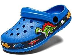 3. FolHaoth Little Kids Cute Blue Dinosaur Clogs