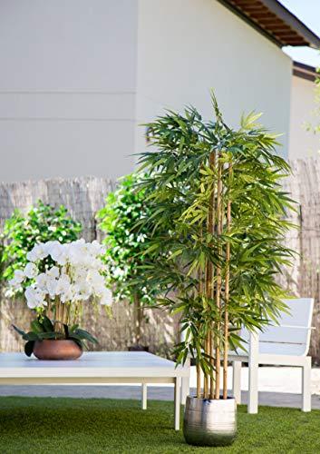 Maia Shop Bambusbaum mit Natürlichem Schilf, ideal für die Innendekoration, Baum, Künstliche Pflanze (180 cm), Bamboo - 2