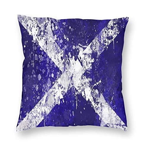 FULIYA Fundas de cojín de 45 x 45 cm, funda de almohada cuadrada de poliéster suave para sala de estar, sofá cama, juego de 1, Escocia, fondo, textura, pintura, manchas