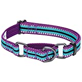 Blueberry Pet 3M Reflective Multi-Colored Stripe Safety Training Martingale Dog Collar, Violet and Celeste, Medium, Heavy Duty Adjustable Collars for Dogs