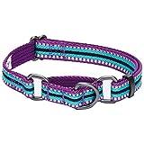 Blueberry Pet Collier Chien Martingale, 2cm M, 3M réfléchissant Multicolore Rayures Violet et Bleu Céleste, Collier pour Chien Moyen