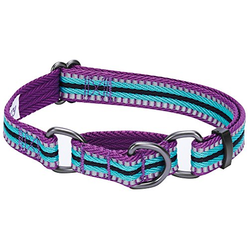 Blueberry Pet 8 Colors 3M Reflective Multi-Colored Stripe Safety Training Martingale Dog Collar,...