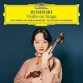 Violin on Stage