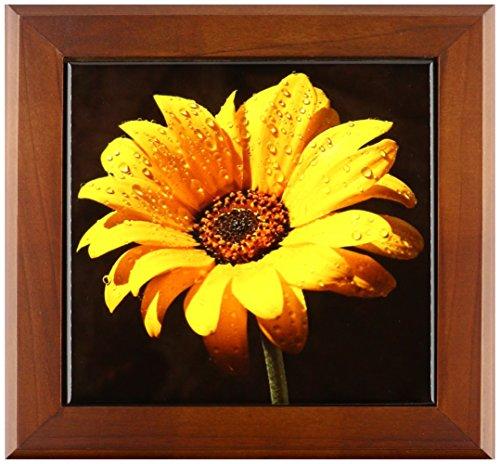 3dRose ft_98576_1 Tau auf Sonnenblume vor schwarzem Hintergrund, gerahmte Fliese, 20,3 x 20,3 cm