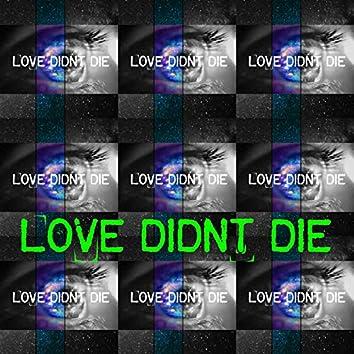 Love Didn't Die