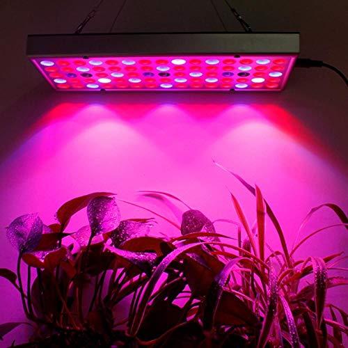 Plantengroeilamp LED Grow Light Full Spectrum plantenverlichting voor planten bloemen LED planten Grow Lights Cob voor Box in