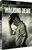The Walking Dead-L'intégrale de la Saison 9 [Blu-Ray]
