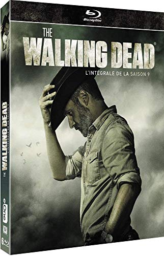 The Walking Dead - L'intégrale de la saison 9 [Blu-ray]