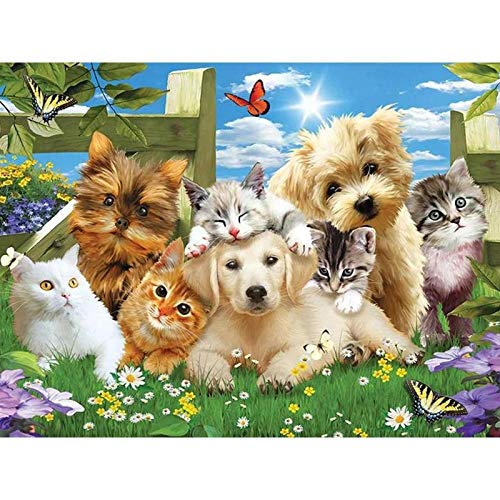 WSLMR DIY Crystal Full Drill Round 5D Diamond Painting Garden Cats Dogs Cross Stitch kit Mosaic Round Rhinestone (12x16inch/30x40cm) Without Frame