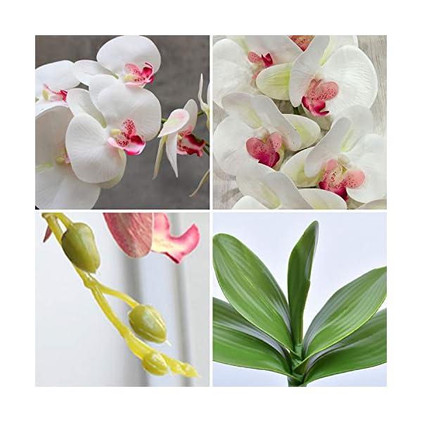 FagusHome 2 Piezas Flores Artificiales Orquídea Phalaenopsis Mariposa 105cm con 2 Piezas Hojas de Orquídea Phalaenopsis…