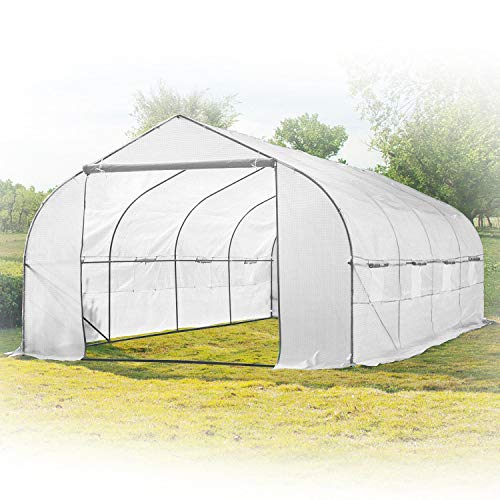 KapscoMoto Large 20ft Portable Greenhouse Outdoor Walk in Green House Hothouse for Fruits, Vegetables, Plants, and Flowers - 20ft L x 10ft W x 7ft H