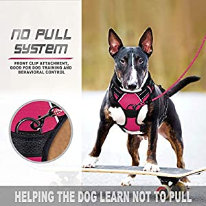 BARKBAY No Pull Dog Harness Front Clip Heavy Duty Reflective Easy Control Handle for Large Dog Walking(Pink,M)