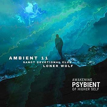 Psybient - Awakening Of Higher Self