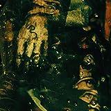 鉤爪(かぎづめ)の主[エクストリーム・メタル最先端サウンド/CD(日本語解説書封入/歌詞対訳付)]