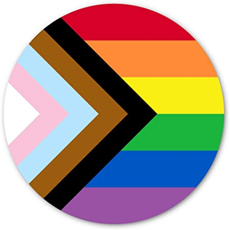 Lesbian gay pride flag funny fridge magnet coming out or just because gift for LGBT