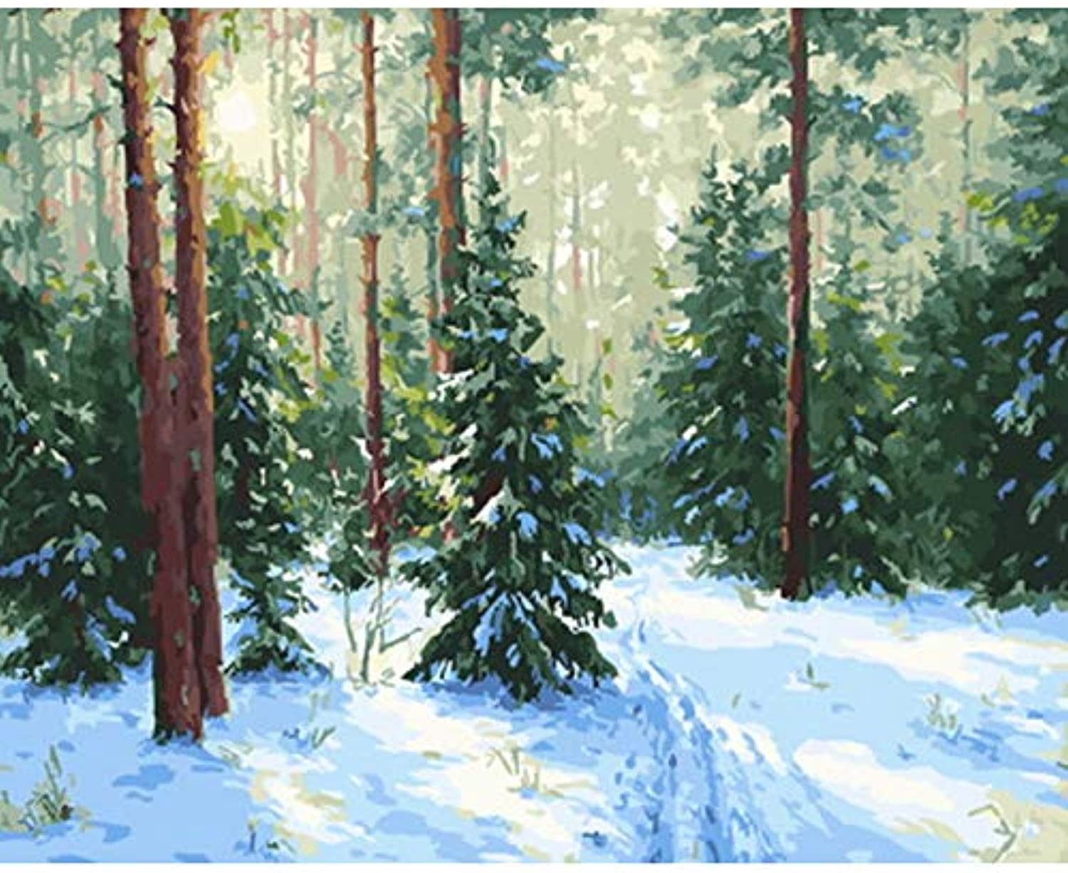 CAYYOU DIY Un picture oil painting by numbers paint by number for home decor canvas painting snow, Framed, 50x60cm
