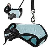 Vientiane Arnés Ajustable Perros, Chaleco para Gatos Conejos y Perros, Chaleco Transpirable con Corbata, Cinturón para Caminar en el Pecho en Gatito para Cachorros, No Afecta a Caminar, XL (Azul)