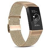 Amzpas Kompatible Für Fitbit Charge 3 Armband/Fitbit Charge 4 Armband, Metall Edelstahl Ersatzarmband Kompatibel mit Fitbit Charge 3/ Charge 4 (L, 02 Roségold)