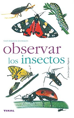 Observar Los Insectos(Naturaleza-Animales)