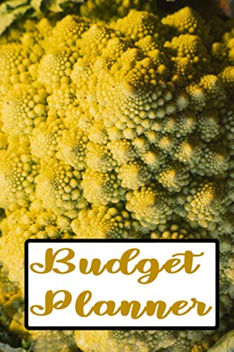 BUDGET PLANNER: Broccoflower fractal in Nature pattern Romanesco Math in Nature Monthly Bill Planner and Organizer | bill organizer budget planner ... or Personal Finance Planning Workbook