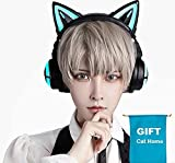 Version UP 3G Cat Ear Headphones Type-C Wireless 5.0 aptX Low Latency, Gaming Pro 7.1 Surround Sound, Noise Cancelling Mic (3G, Black)