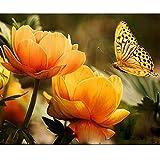 NVFDFF Dipingi per Numero Kit Dipinti ad Olio FAI da te, Fiori di Farfalla con pennelli e Pigmento Acrilico Decorazione Della casa 40 x 50cm Senza Cornice