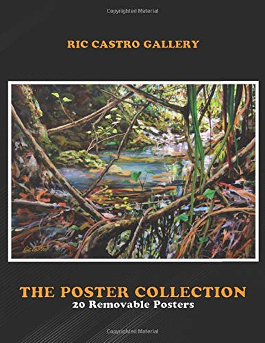 Poster Collection: Ric Castro Gallery Secret Stream Landscapes